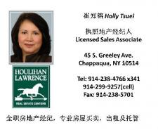 Real Estate Agent: Holly Tsuei